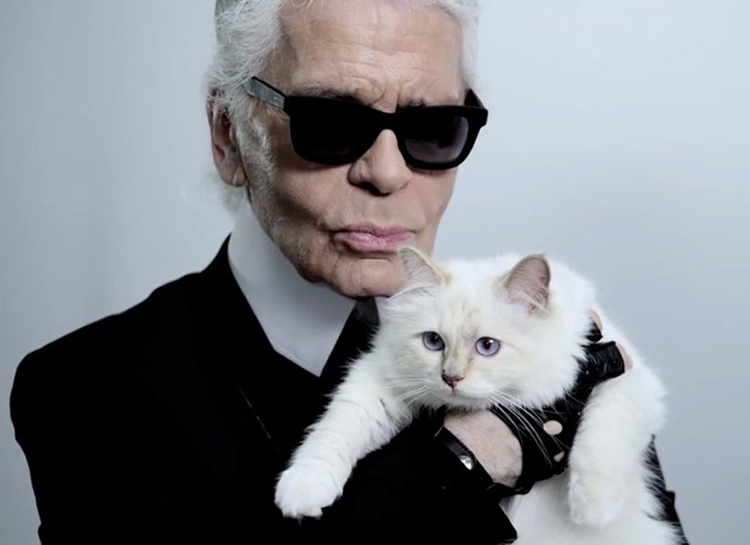 Не только любимая кошка: кто претендует на многомиллионное наследство Карла Лагерфельда