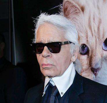 Кошка Карла Лагерфельда Шупетт выпустила коллекцию мебели для домашних животных