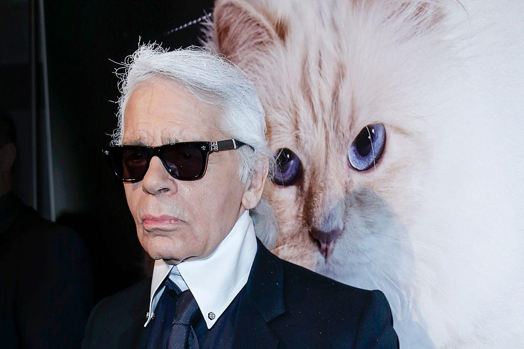 Кішка Карла Лагерфельда Шупетт випустила колекцію меблів для домашніх тварин