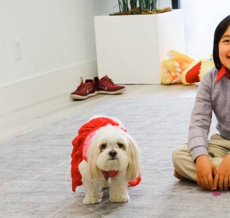 9-летний мальчик из Техаса стал самым высокооплачиваемым YouTube-блогером 2020 года