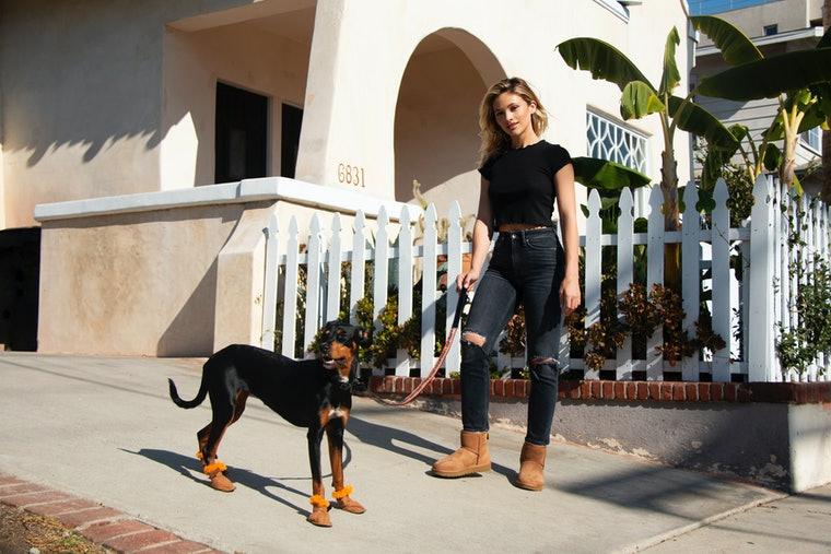 UGG выпустили первую коллекцию теплой обуви для собак