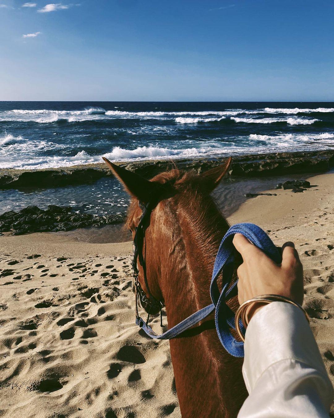 Прогулки на лошадях и местные кафе: Алла Костромичева проводит время в Пуэрто-Рико