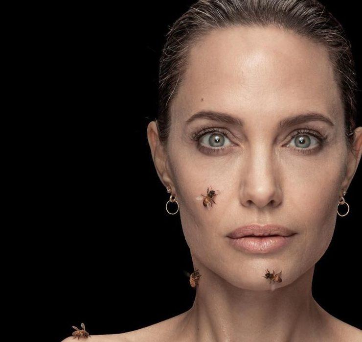 Анджеліна Джолі знялася з роєм бджіл для National Geographic