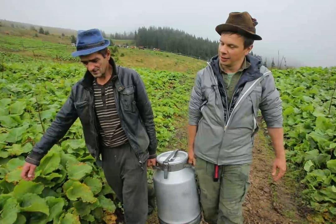 «Верховина, встречай нового соседа»: Дмитрий Комаров купил землю в Карпатах